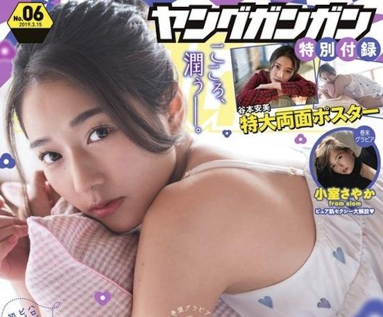 谷本安美(つばきファクトリー)/「ヤングガンガン」6号表紙